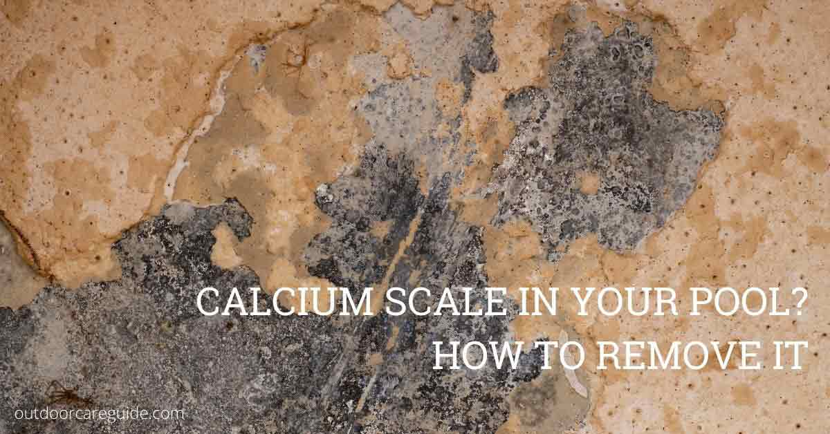 remove calcium scale from pool tiles